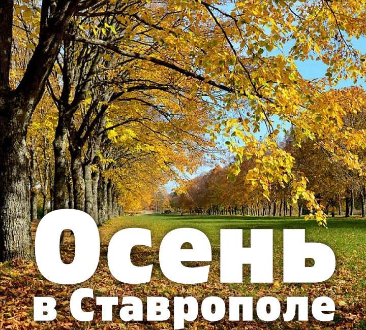 Осень в Ставрополе